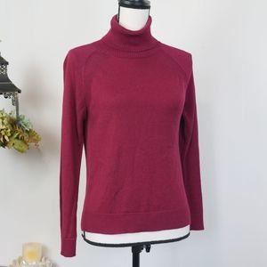 Banana Republic Turtleneck Raglan Sweater Pink XS